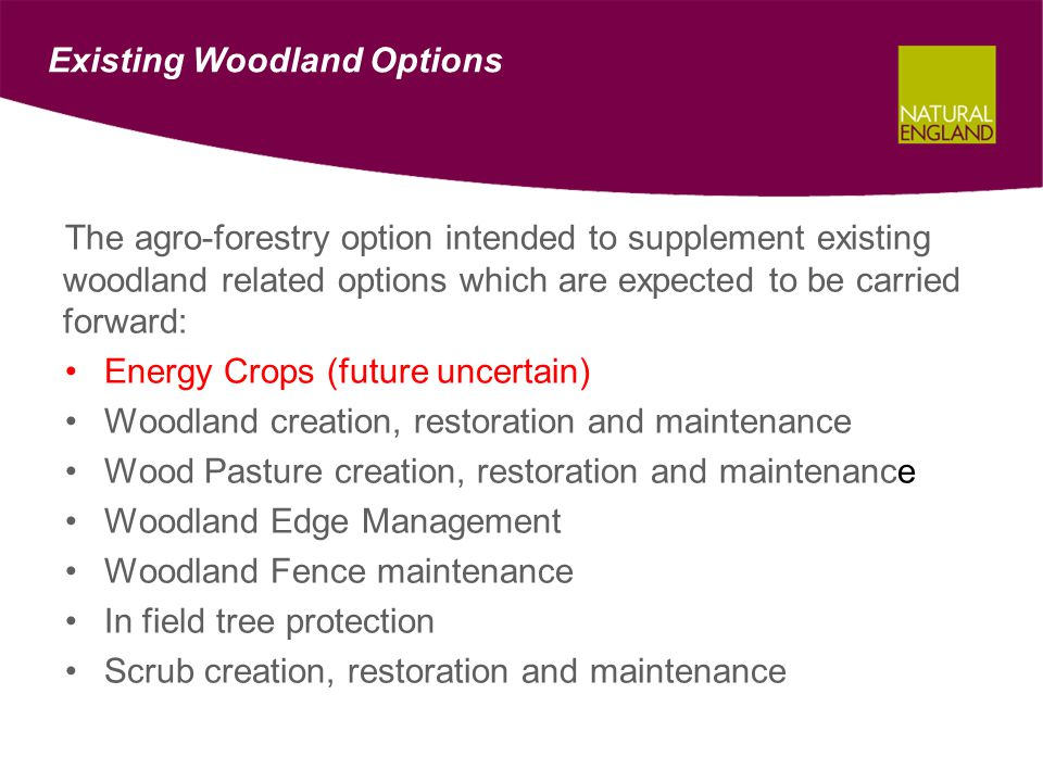 Existing Woodland Options The agro-forestry option intended to supplement existing woodland related options which are expected to be carried forward: Energy Crops (future uncertain) Woodland creation, restoration and maintenance Wood Pasture creation, restoration and maintenance Woodland Edge Management Woodland Fence maintenance In field tree protection Scrub creation, restoration and maintenance