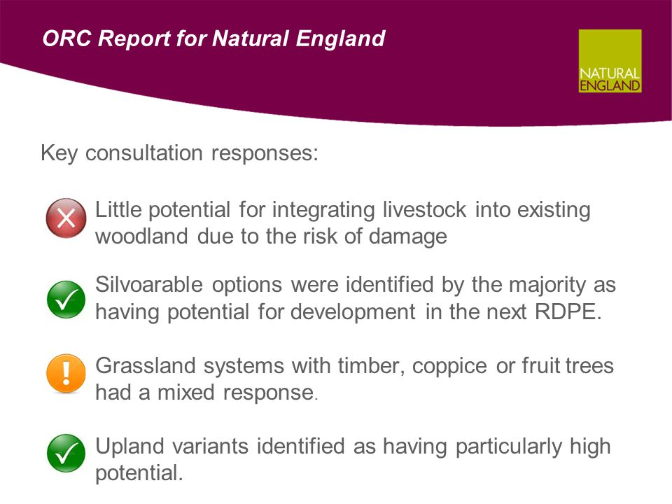 ORC Report for Natural England Key consultation responses: –Little potential for integrating livestock into existing woodland due to the risk of damage –Silvoarable options were identified by the majority as having potential for development in the next RDPE.