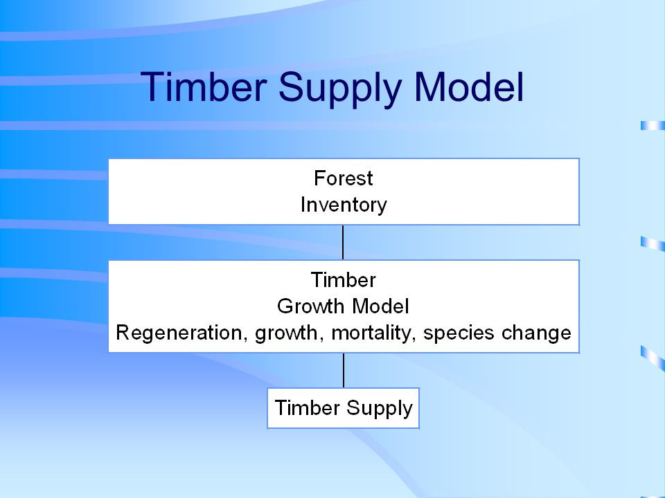 Timber Supply Model