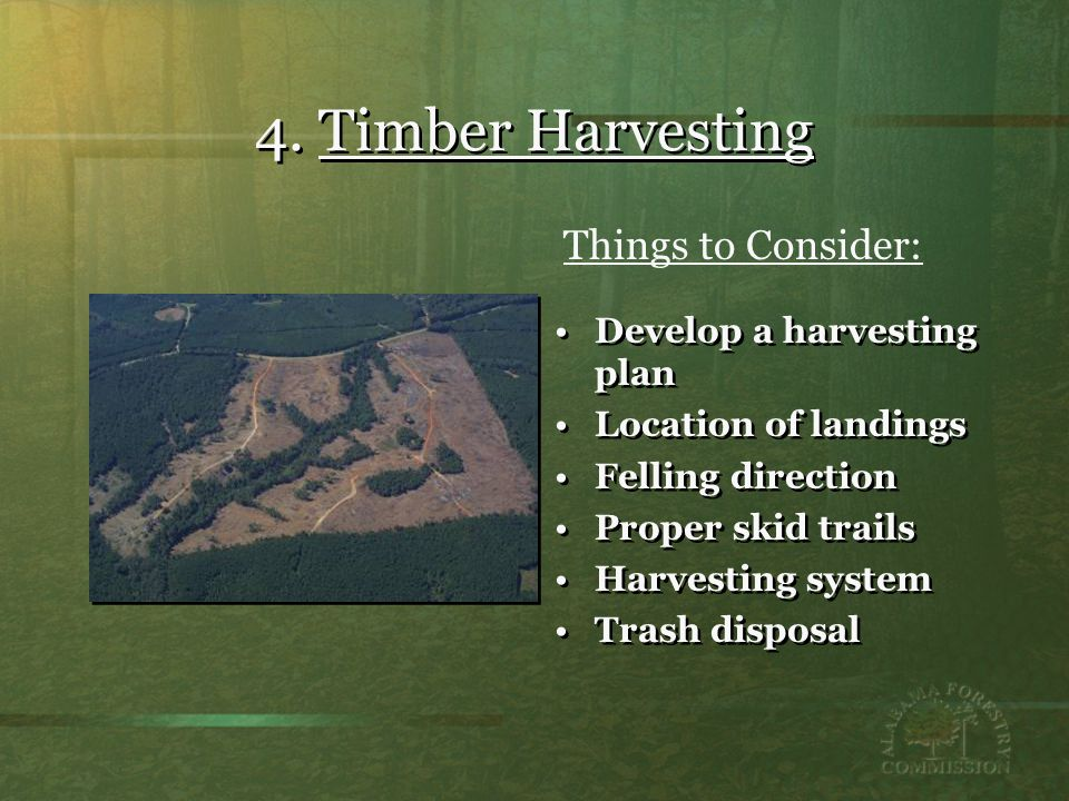 4. Timber Harvesting Develop a harvesting plan Location of landings Felling direction Proper skid trails Harvesting system Trash disposal Develop a ha