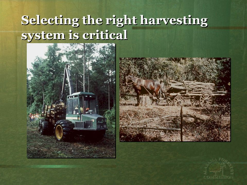 Selecting the right harvesting system is critical
