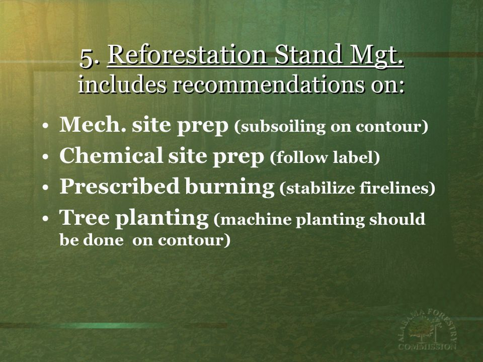 5.Reforestation Stand Mgt. includes recommendations on: Mech.