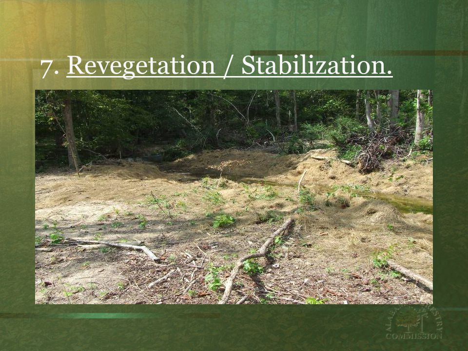 7. Revegetation / Stabilization.
