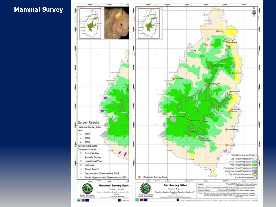 Mammal Survey