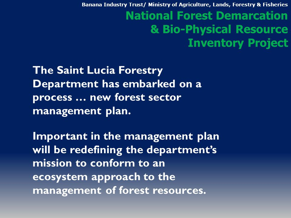 The Saint Lucia Forestry Department has embarked on a process … new forest sector management plan.