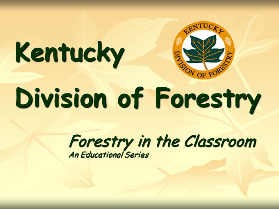 Kentucky Division of Forestry Forestry in the Classroom An Educational Series