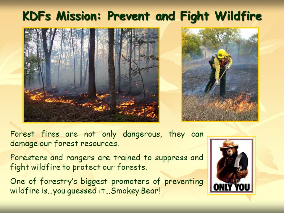 KDFs Mission:Prevent and Fight Wildfire Forest fires are not only dangerous, they can damage our forest resources.