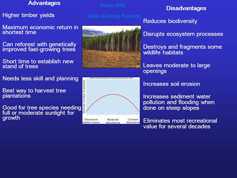 Trade-Offs Clear-Cutting Forests Advantages Higher timber yields Maximum economic return in shortest time Can reforest with genetically improved fast-