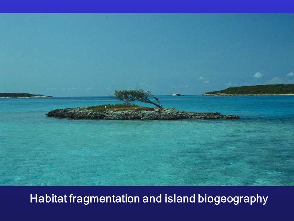 Habitat fragmentation and island biogeography