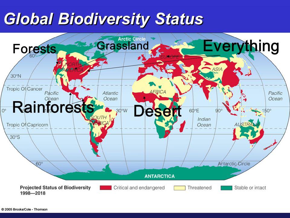Global Biodiversity Status Forests Grassland Rainforests Desert Everything