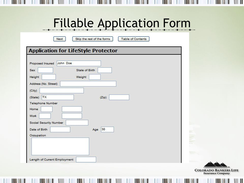 Fillable Application Form