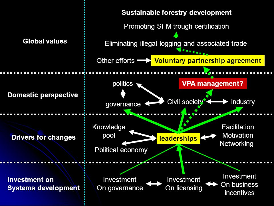 Sustainable forestry development Global values Promoting SFM trough certification Eliminating illegal logging and associated trade Voluntary partnership agreementOther efforts Domestic perspective governance politics industry Drivers for changes Investment on Systems development VPA management.