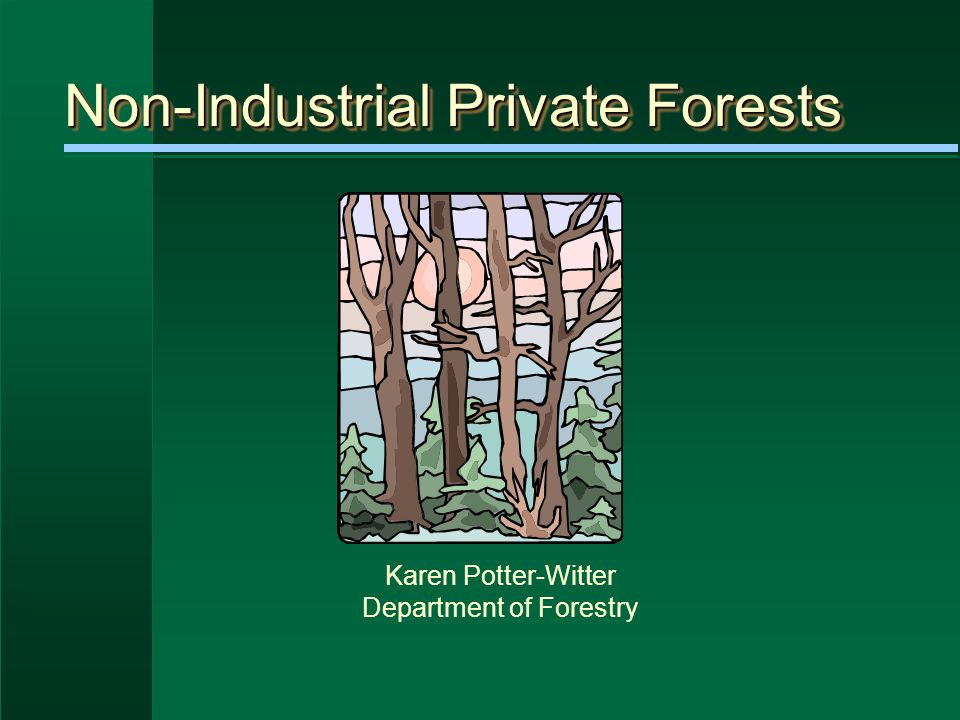 Non-Industrial Private Forests Karen Potter-Witter Department of Forestry