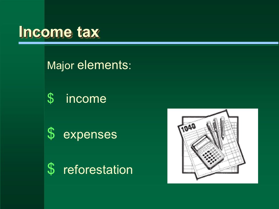 Income tax Major elements : $ income $ expenses $ reforestation