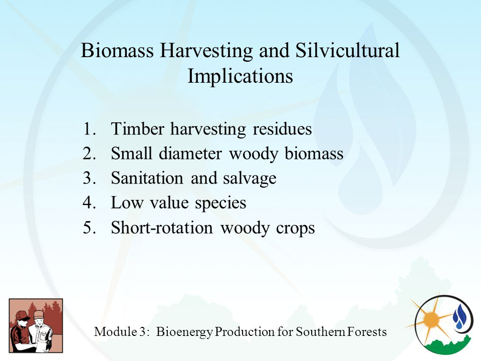 Biomass Harvesting and Silvicultural Implications 1.Timber harvesting residues 2.Small diameter woody biomass 3.Sanitation and salvage 4.Low value species 5.Short-rotation woody crops Module 3: Bioenergy Production for Southern Forests