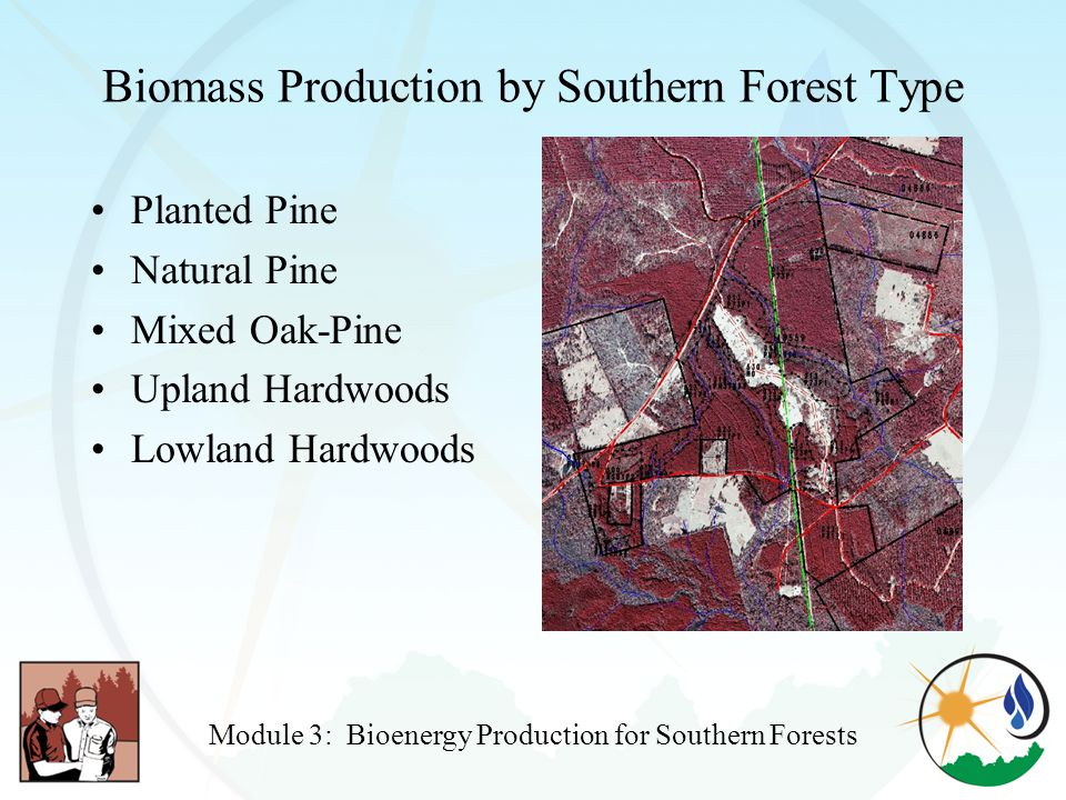 Biomass Production by Southern Forest Type Planted Pine Natural Pine Mixed Oak-Pine Upland Hardwoods Lowland Hardwoods Module 3: Bioenergy Production for Southern Forests