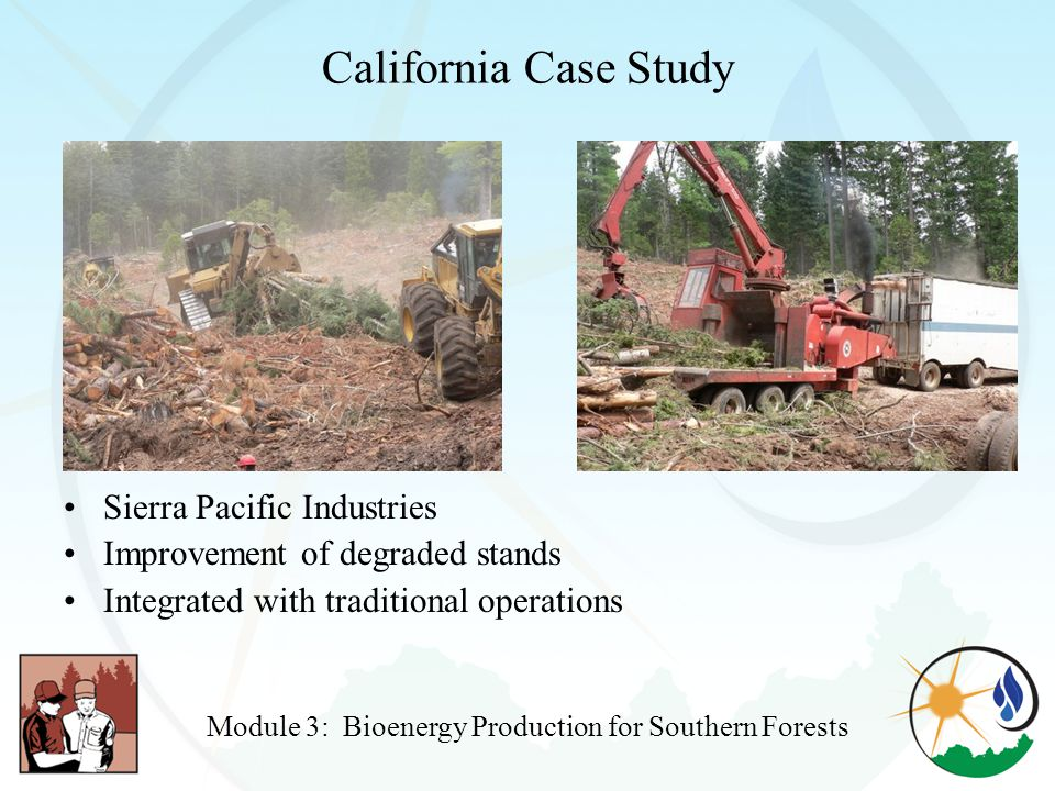 California Case Study Sierra Pacific Industries Improvement of degraded stands Integrated with traditional operations Module 3: Bioenergy Production for Southern Forests