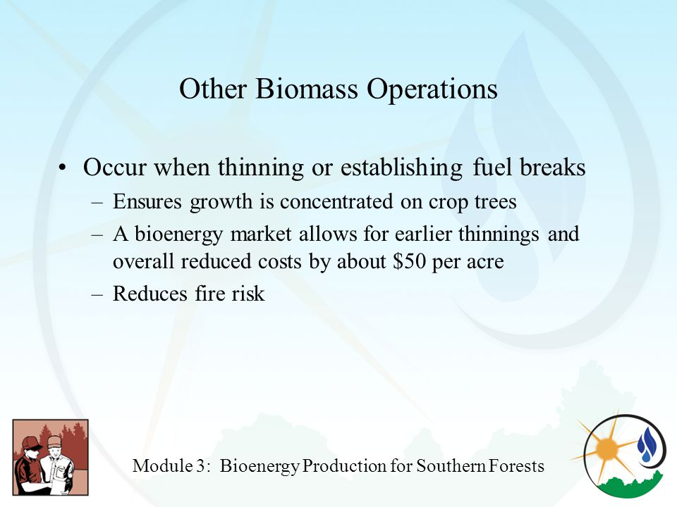 Other Biomass Operations Occur when thinning or establishing fuel breaks –Ensures growth is concentrated on crop trees –A bioenergy market allows for earlier thinnings and overall reduced costs by about $50 per acre –Reduces fire risk Module 3: Bioenergy Production for Southern Forests