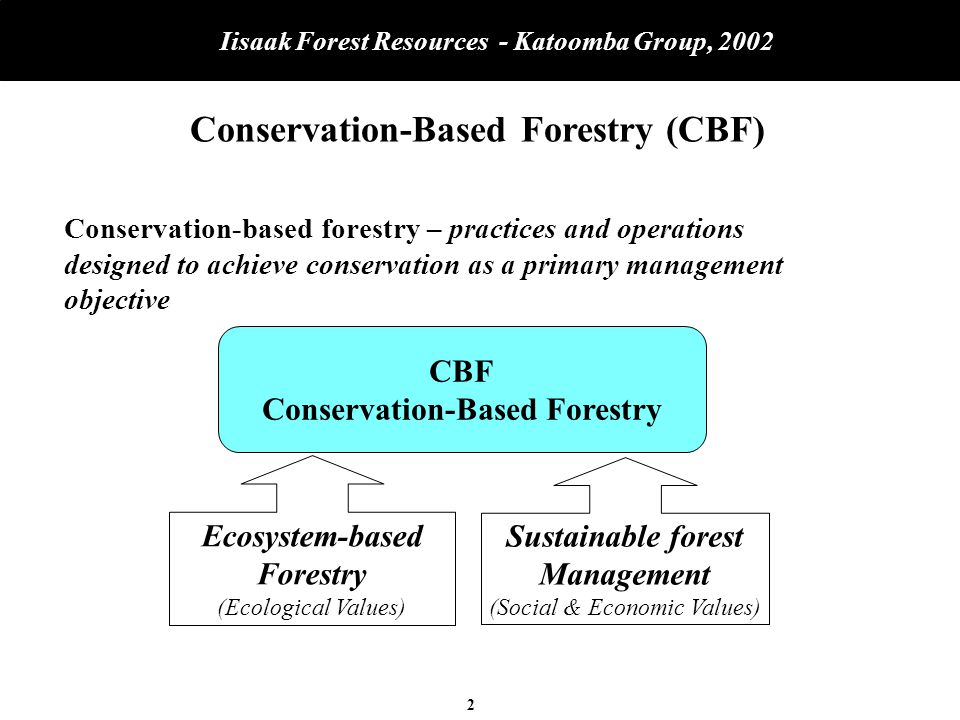 23 Iisaak Forest Resources - Katoomba Group, 2002 Questions and Issues Brainstorming Given that: A.Iisaak is developing in phases: –Business fundamentals, forestry and manufacturing, first –Non-timber business segments second (NTFP, Green Investment) B.Iisaak is undercapitalized and seeking financing now: 1.Is strategy the right approach (priorities, timing).