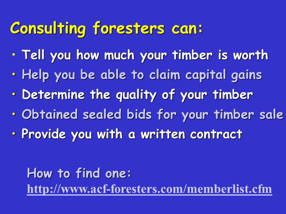 Consulting foresters can: How to find one: http://www.acf-foresters.com/memberlist.cfm Tell you how much your timber is worth Help you be able to claim capital gains Help you be able to claim capital gains Determine the quality of your timber Determine the quality of your timber Obtained sealed bids for your timber sale Obtained sealed bids for your timber sale Provide you with a written contract Provide you with a written contract