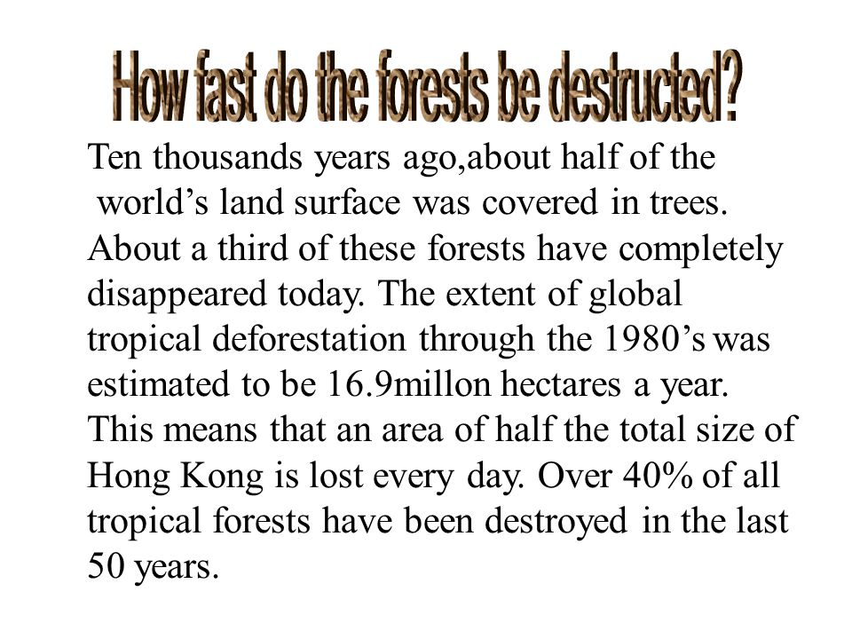 Ten thousands years ago,about half of the world's land surface was covered in trees.