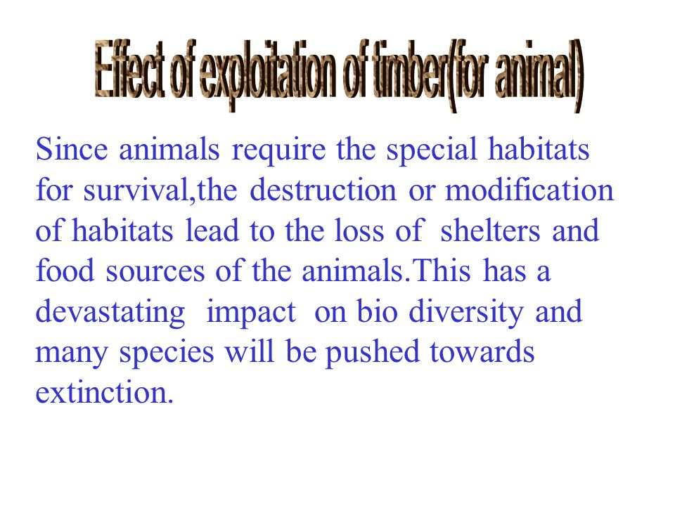 Since animals require the special habitats for survival,the destruction or modification of habitats lead to the loss of shelters and food sources of the animals.This has a devastating impact on bio diversity and many species will be pushed towards extinction.