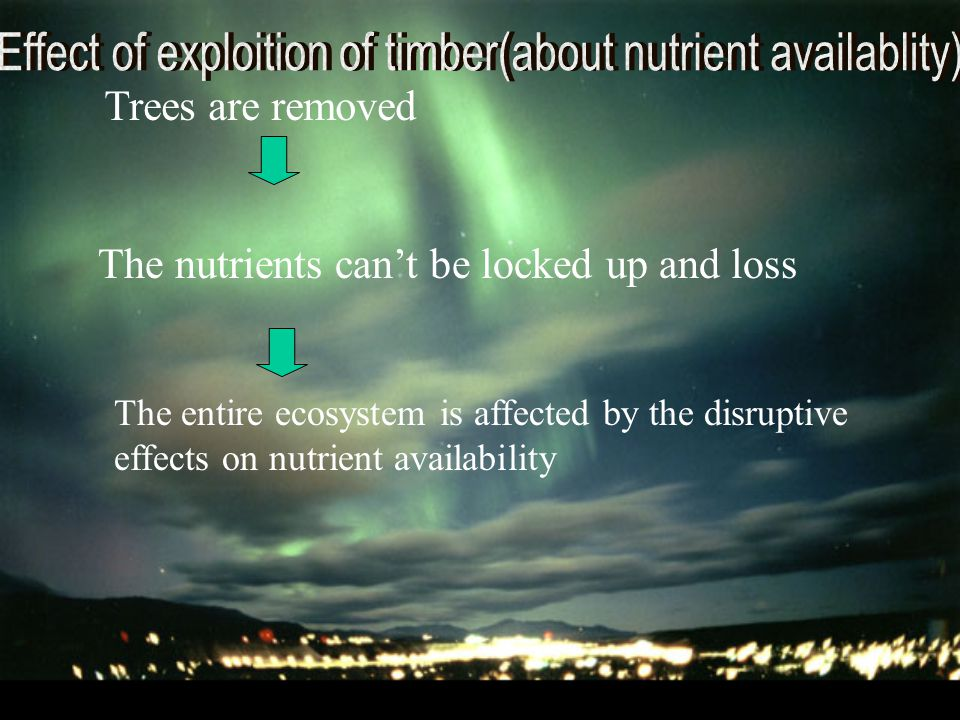Trees are removed The nutrients can't be locked up and loss The entire ecosystem is affected by the disruptive effects on nutrient availability