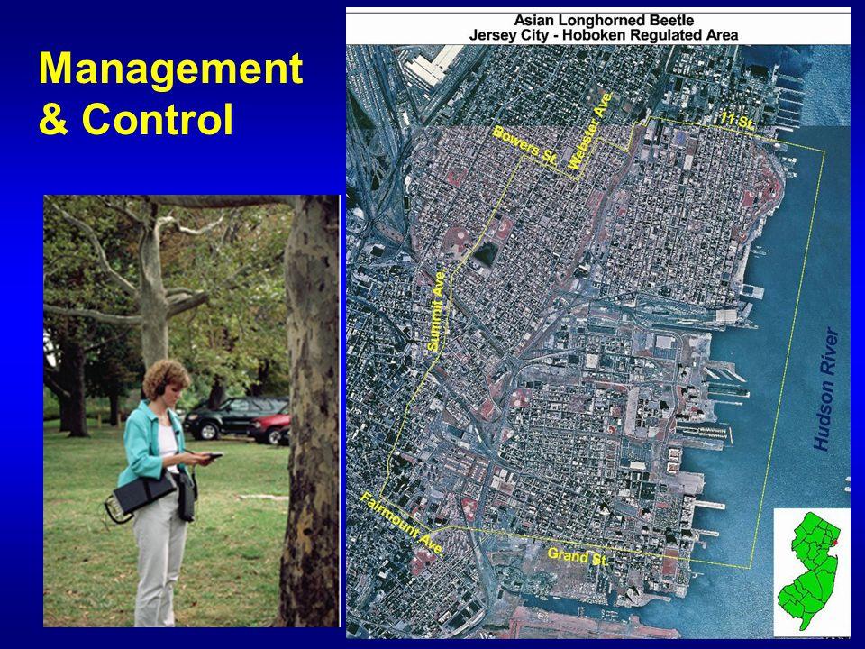 Management & Control