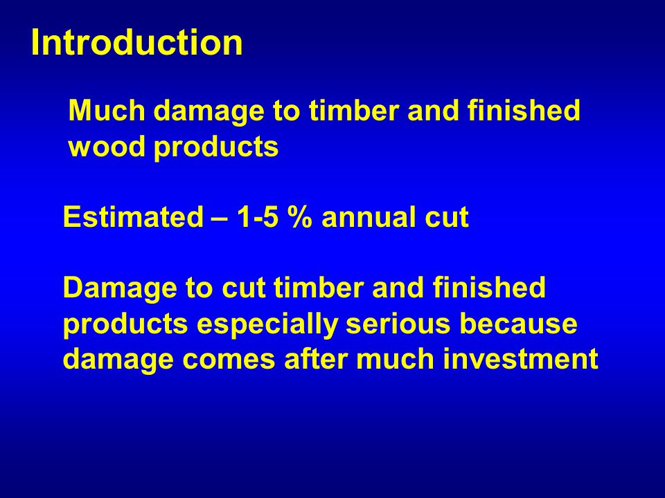 Introduction Much damage to timber and finished wood products Damage to cut timber and finished products especially serious because damage comes after much investment Estimated – 1-5 % annual cut