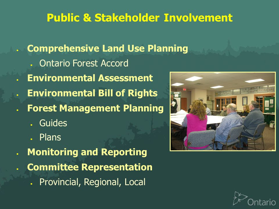 Public & Stakeholder Involvement  Comprehensive Land Use Planning  Ontario Forest Accord  Environmental Assessment  Environmental Bill of Rights  Forest Management Planning  Guides  Plans  Monitoring and Reporting  Committee Representation  Provincial, Regional, Local