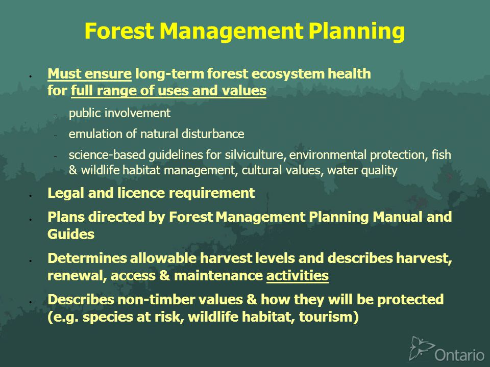 Forest Management Planning  Must ensure long-term forest ecosystem health for full range of uses and values  public involvement  emulation of natural disturbance  science-based guidelines for silviculture, environmental protection, fish & wildlife habitat management, cultural values, water quality  Legal and licence requirement  Plans directed by Forest Management Planning Manual and Guides  Determines allowable harvest levels and describes harvest, renewal, access & maintenance activities  Describes non-timber values & how they will be protected (e.g.