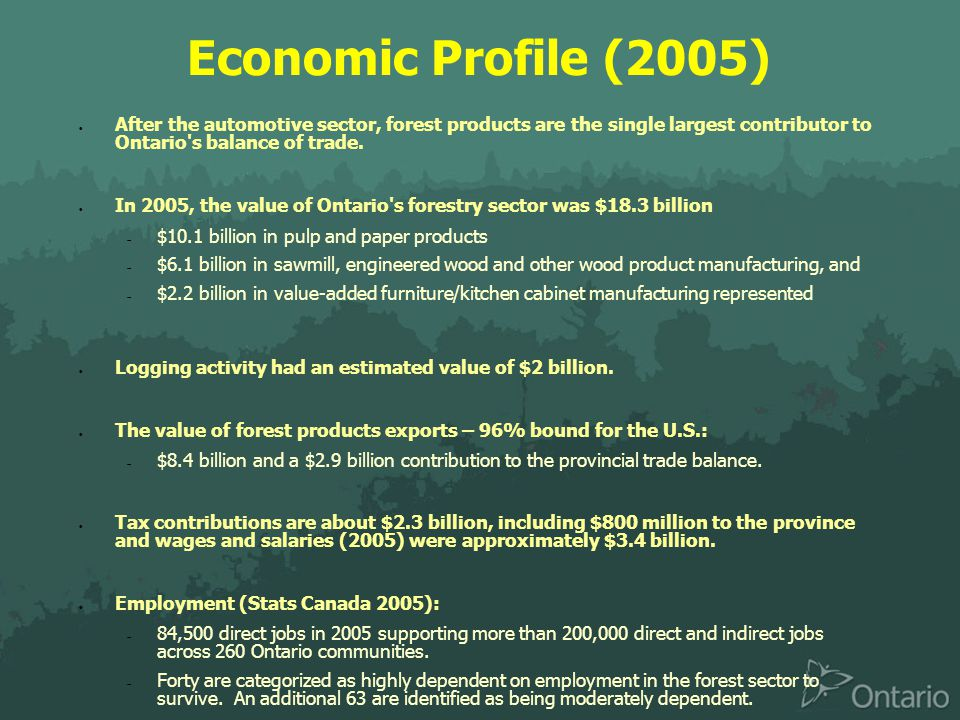 Economic Profile (2005)  After the automotive sector, forest products are the single largest contributor to Ontario s balance of trade.