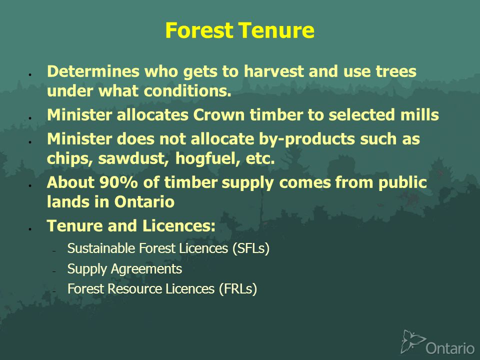 Forest Tenure  Determines who gets to harvest and use trees under what conditions.