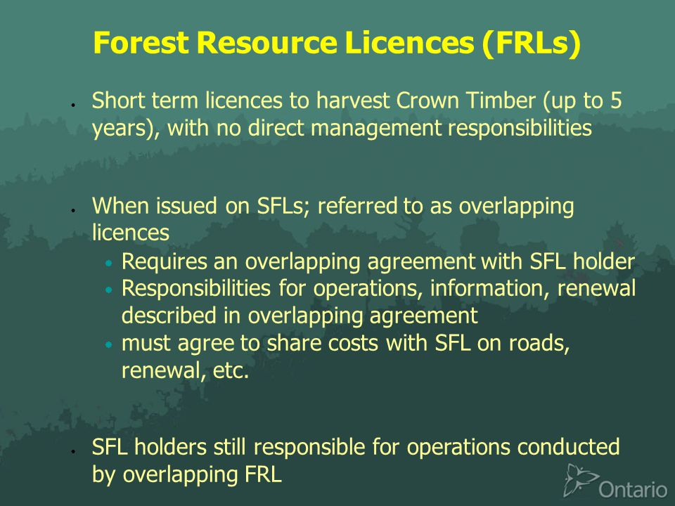 Forest Resource Licences (FRLs)  Short term licences to harvest Crown Timber (up to 5 years), with no direct management responsibilities  When issued on SFLs; referred to as overlapping licences  Requires an overlapping agreement with SFL holder  Responsibilities for operations, information, renewal described in overlapping agreement  must agree to share costs with SFL on roads, renewal, etc.