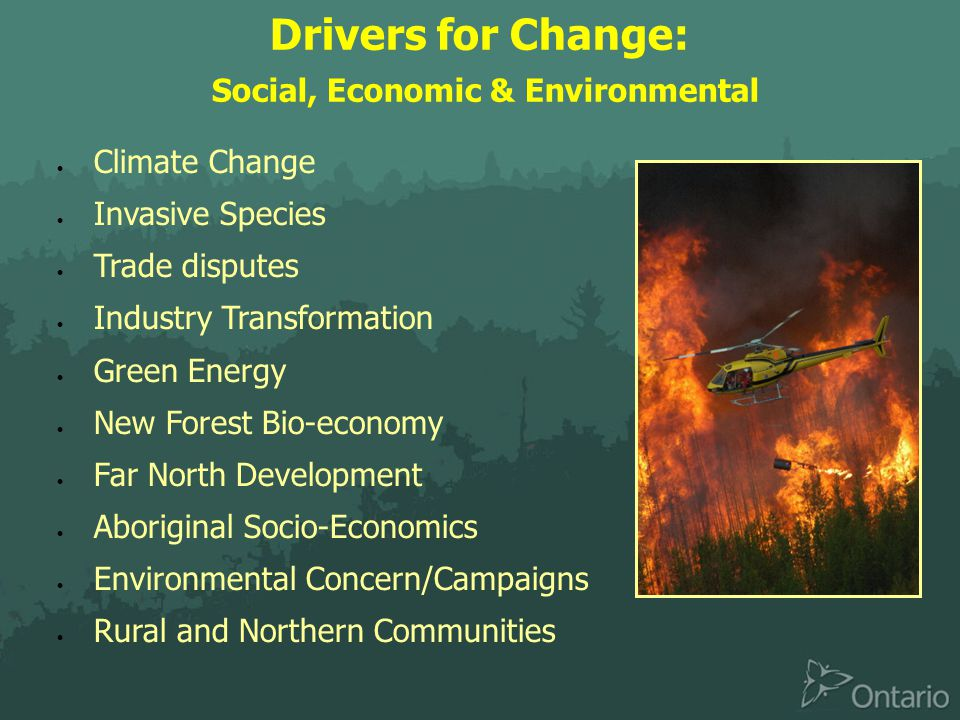 Drivers for Change: Social, Economic & Environmental  Climate Change  Invasive Species  Trade disputes  Industry Transformation  Green Energy  New Forest Bio-economy  Far North Development  Aboriginal Socio-Economics  Environmental Concern/Campaigns  Rural and Northern Communities
