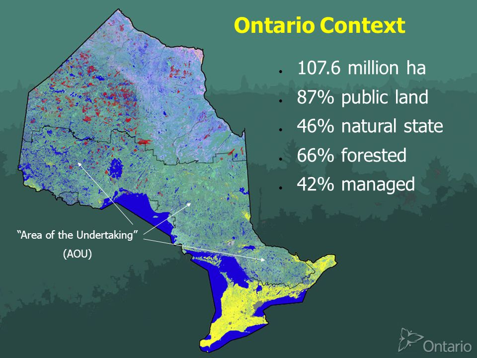 Ontario Context  107.6 million ha  87% public land  46% natural state  66% forested  42% managed Area of the Undertaking (AOU)