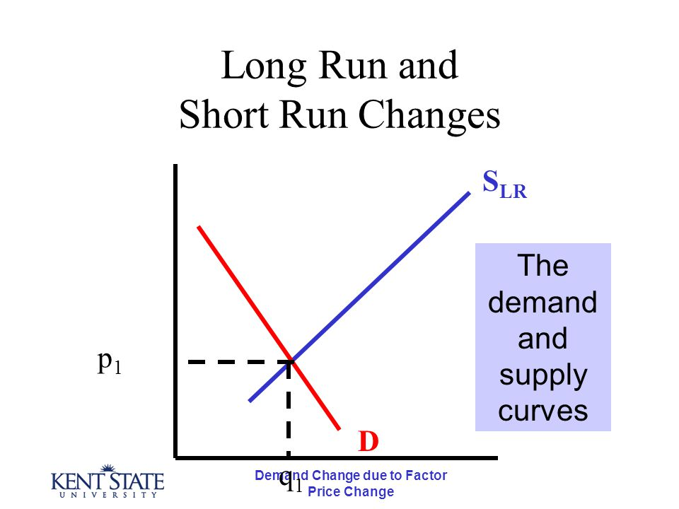 Demand Change due to Factor Price Change Long Run and Short Run Changes D p1p1 q1q1 The demand and supply curves S LR