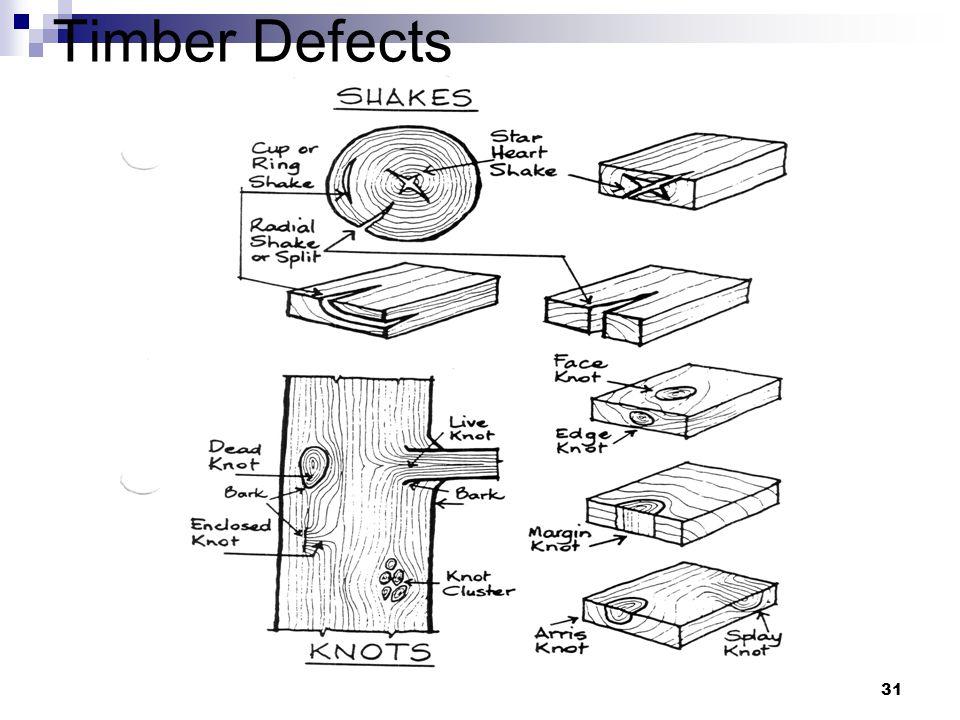 Penn State Unversity - CE 336 Tikalsky & Tepke31 Timber Defects