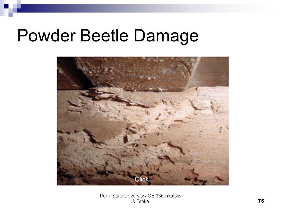 Penn State Unversity - CE 336 Tikalsky & Tepke75 Powder Beetle Damage