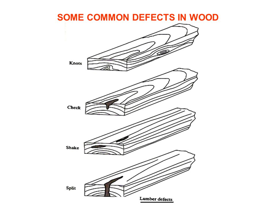 SOME COMMON DEFECTS IN WOOD