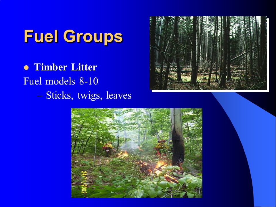 Fuel Groups Timber Litter Fuel models 8-10 –Sticks, twigs, leaves