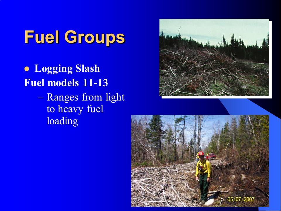 Fuel Groups Logging Slash Fuel models 11-13 –Ranges from light to heavy fuel loading