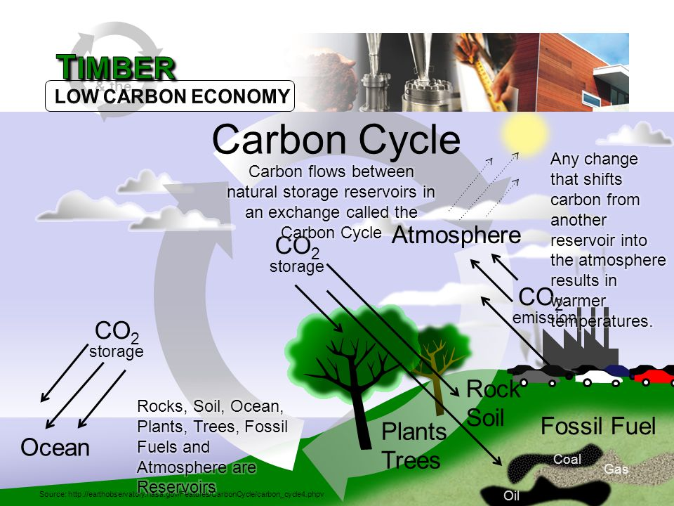 Rock Soil Ocean Oil Coal Gas Fossil Fuel Plants Trees CO 2 emission CO 2 storage CO 2 storage Atmosphere & the Carbon Cycle Source: http://earthobservatory.nasa.gov/Features/CarbonCycle/carbon_cycle4.phpv