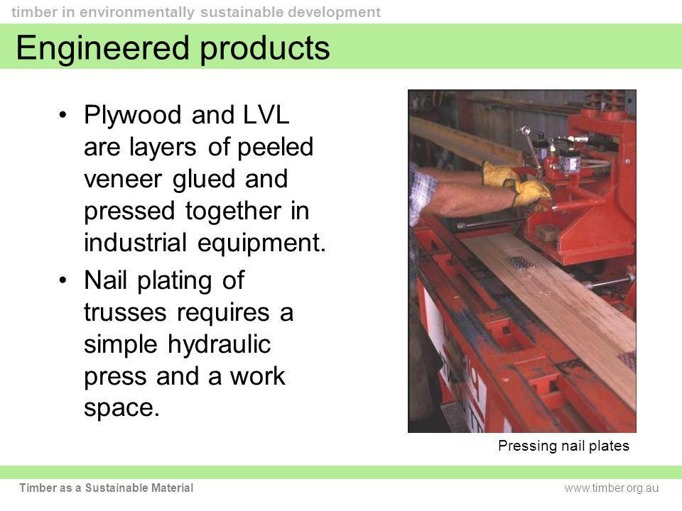 www.timber.org.au timber in environmentally sustainable development Timber as a Sustainable Material Engineered products Plywood and LVL are layers of peeled veneer glued and pressed together in industrial equipment.