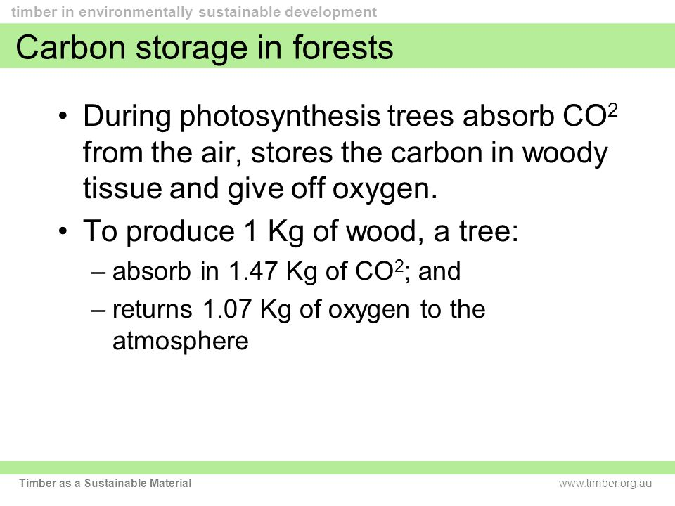 www.timber.org.au timber in environmentally sustainable development Timber as a Sustainable Material Carbon storage in forests During photosynthesis trees absorb CO 2 from the air, stores the carbon in woody tissue and give off oxygen.