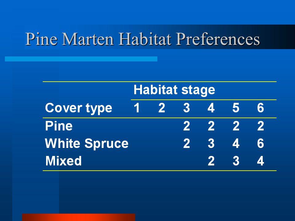 Pine Marten Habitat Preferences