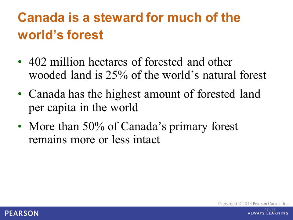 © 2010 Pearson Education Canada Copyright © 2013 Pearson Canada Inc. Canada is a steward for much of the world's forest 402 million hectares of forest