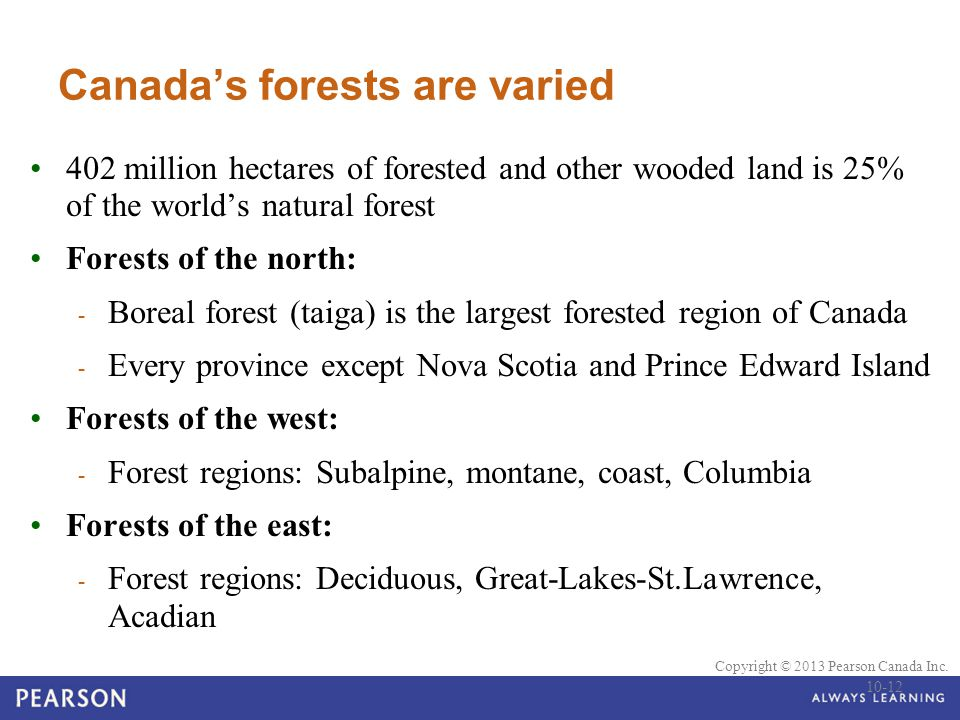 © 2010 Pearson Education Canada Copyright © 2013 Pearson Canada Inc. Canada's forests are varied 402 million hectares of forested and other wooded lan