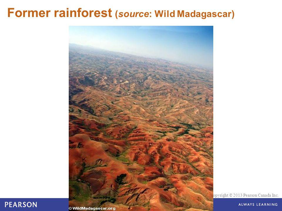 © 2010 Pearson Education Canada Copyright © 2013 Pearson Canada Inc. Former rainforest (source: Wild Madagascar)