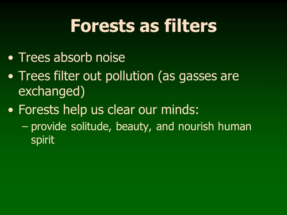 Forests provide biodiversity Forests contain a greater diversity of wildlife than any other terrestrial biome How diverse are the forests of eastern Kentucky compared to the rest of the U.S.